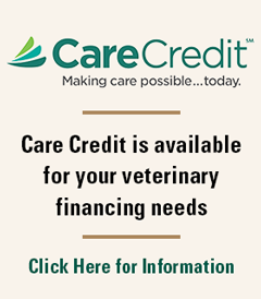 Care Credit Block