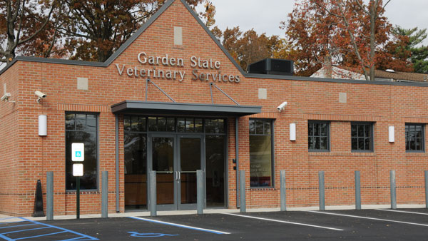 garden state veterinary services iselin nj