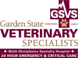 GSVS logo