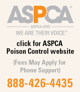 ASPCA Block