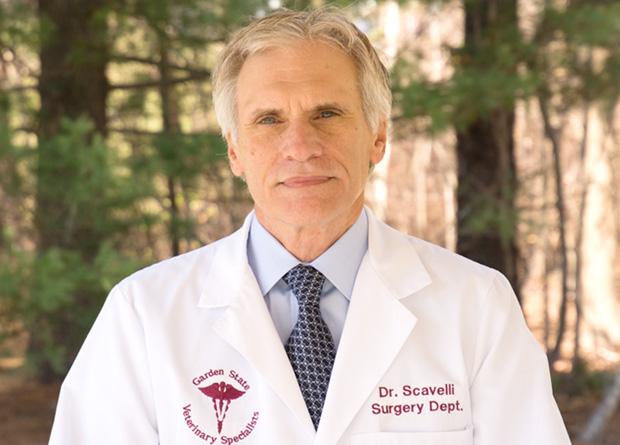 Dr. Thomas Scavelli